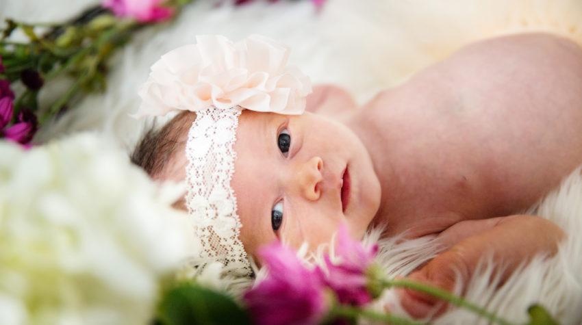 Charli's Newborn Photos